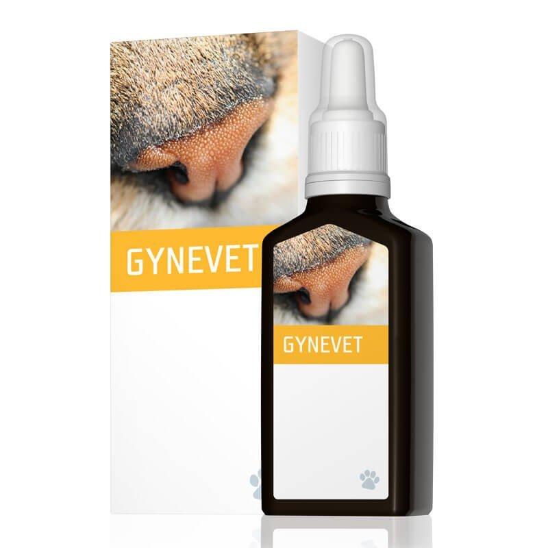 energyvet_gynevet_800x800