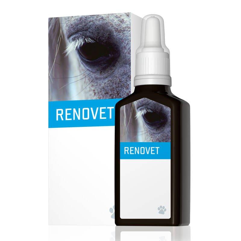 energyvet_renovet_800x800