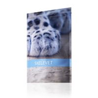 SKELEVET - Diszplázia Tacskóbénulásra