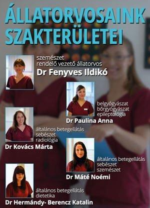 allatorvos_klapka_orvosok