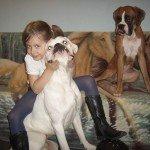 Kutya csalánkiütés gyógyult 1