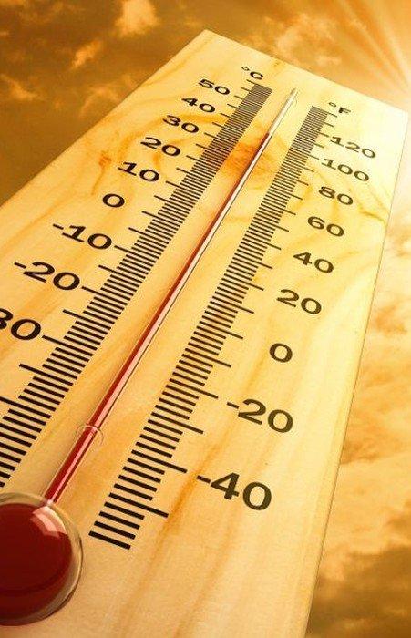 Légynyüvesség, toklász, hőguta, nyári bajok