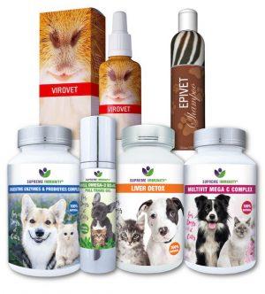 Kutya és macska bőrbetegségek